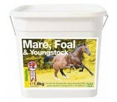Mare, Stallion & Foal Care - Equine