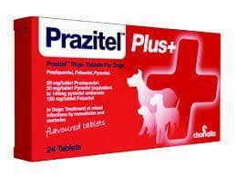 Prazital Plus - Dog Wormer - Single Tablet Only