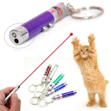 2 in 1 Laser light pointer toy with torch