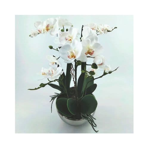46cm White Real Touch Orchid Flower in Display Chrome Pot
