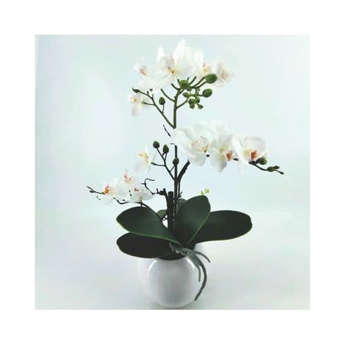 47cm White Real Touch Orchid Flower in Display White Pot
