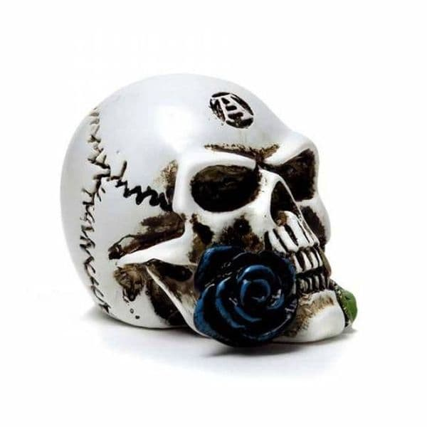 ALCHEMY GOTHIC Alchemist Skull Miniature Collectible Ornament