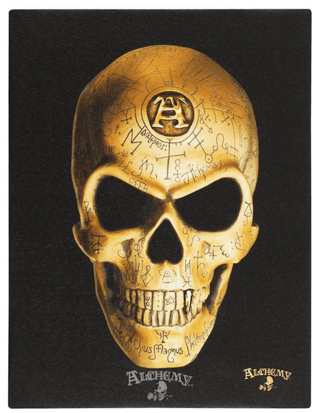 ALCHEMY GOTHIC  'Omega Skull' Canvas Picture