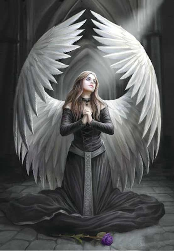 ANNE STOKES Gothic Angel Greeting Card