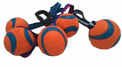 Chuckit! Ultra Ball SMALL chuck it  Bouncy AMAZING Balls With Webbed Handle