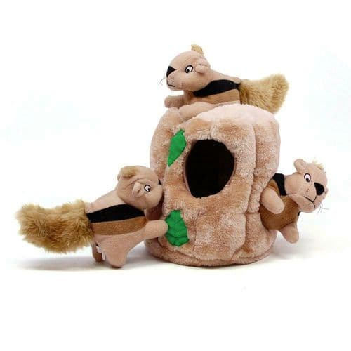 Hide A Squirrel  Plush 4 piece Puzzle Dog Toy