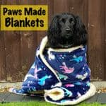 Paws Made™ Blankets