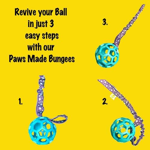 Paws Made Luxury Sport / Designer Bungee handle dog toy Tug strong elasticated Agility Fun