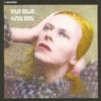 David Bowie - Hunky Dory (LP, Album, RE, RM, 180) New & Sealed