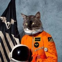 Klaxons Surfing the Void RSD 2020