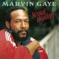 Marvin Gaye  Sexual Healing: The Remixes RSD 2018 LIMITED EDITION