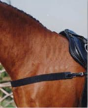 Sabre Elasticated Breastgirth Only (not inc Neckstrap)