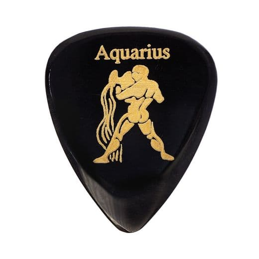 Zodiac Tones Aquarius 1 Guitar Pick